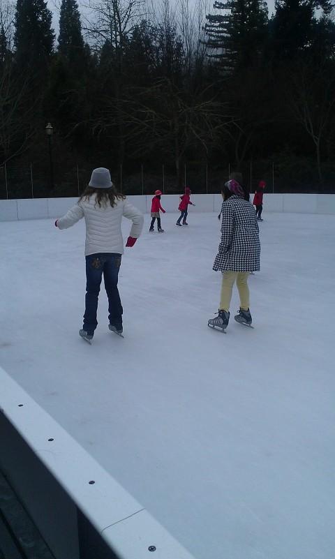 ice skating1